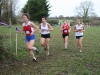 Munster Intermediate Cross Country - Charleville 2010